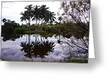 Palm Island I Greeting Card