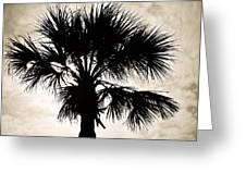 Palm Sihlouette Greeting Card