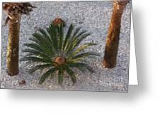 Palm Spray Greeting Card