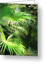 Palm Tree 8 Greeting Card