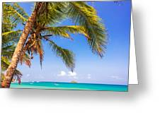 Palm Tree And Caribbean Greeting Card