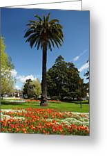 Palm Tree And Flower Gardens, Seymour Greeting Card