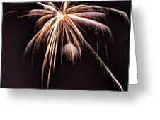 Palm Tree Fireworks Greeting Card