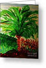 Palm Tree In The Garden Greeting Card by Marie Bulger