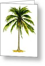 Palm Tree Number 2 Greeting Card