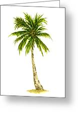 Palm Tree Number 4 Greeting Card