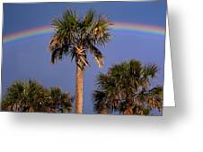 Palm Tree Rainbow Greeting Card