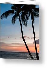 Palm Tree Silhouettes At Sunset Greeting Card by Al Andersen