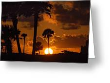 Palm Tree Sunrise In Gulf Shores Greeting Card