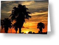 Palm Tree Silhouette Greeting Card