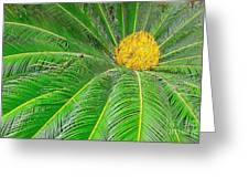 Palm Tree With Blossom Greeting Card