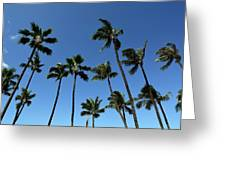 Palm Trees Against A Clear Blue Sky Greeting Card