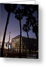 Palm Trees And Hp Pavilion San Jose At Night Greeting Card