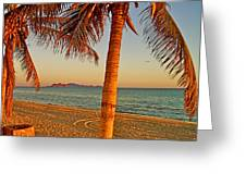 Palm Trees By A Restaurant On The Beach In Bahia Kino-sonora-mexico Greeting Card