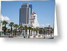 Palm Trees In Downtown Long Beach Greeting Card