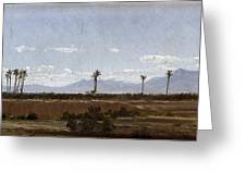 Palm Trees In Elche Greeting Card