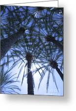 Palm Trees In The Sun Greeting Card