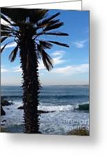 Palm Waves Greeting Card
