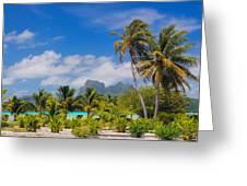 Palm Waving Greeting Card