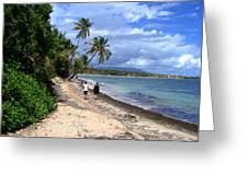Palmas Del Mar Greeting Card