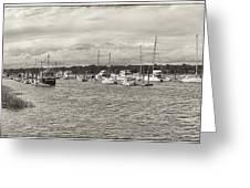 Palmetto Bay Marina Panorama Greeting Card