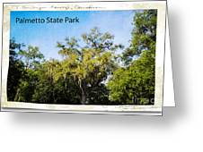 Palmetto State Park Greeting Card