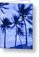 Palms In Storm Wind-bora Bora Tahiti Greeting Card