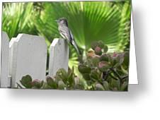 Palms Of Phoebe Greeting Card