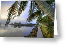 Palms Over The Waterway Greeting Card