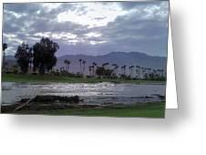 Palms Springs Flood Greeting Card