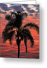Palmtree Apocalypse Greeting Card