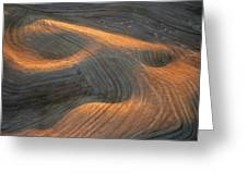 Palouse Contours I Greeting Card by Latah Trail Foundation