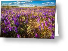 Palouse Falls Wildflowers Greeting Card