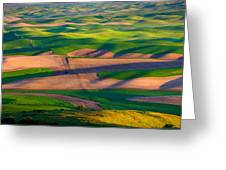 Palouse Ocean Of Wheat Greeting Card