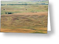 Palouse Palate Greeting Card
