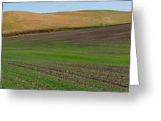 Palouse Patchwork 3 Greeting Card