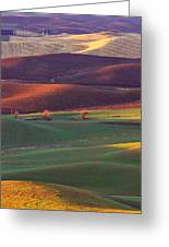 Palouse Sunset Greeting Card