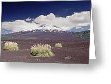Pampas Grass And Old Lava Flow Llaima Greeting Card
