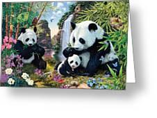 Panda Valley Greeting Card