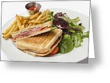 Panini With Ham Melted Cheese French Fries And Salad Greeting Card