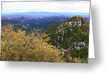 Panorama Emory Pass Vista Nm Greeting Card