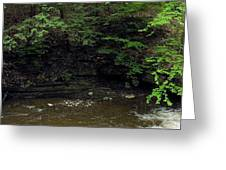 Panorama Of Wolf Creek At Letchworth State Park Greeting Card