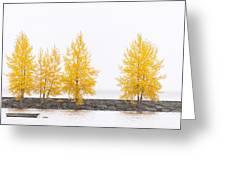 Panorama Tree Greeting Card