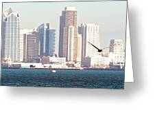 Panoramic Image Of San Diego From The Harbor Greeting Card by Artist and Photographer Laura Wrede
