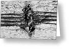 Panoramic Rowing Greeting Card