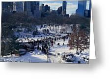 Panoramic View Of Ice Skating Wollman Greeting Card