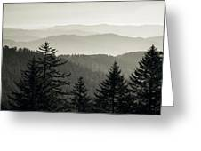 Panoramic View Of Trees With A Mountain Greeting Card
