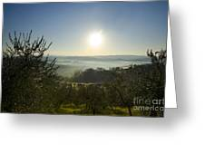 Panoramic View Over The Foggy Field Greeting Card