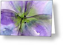 Pansy 1 Greeting Card