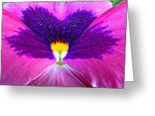 Pansy Abstract 3 Greeting Card